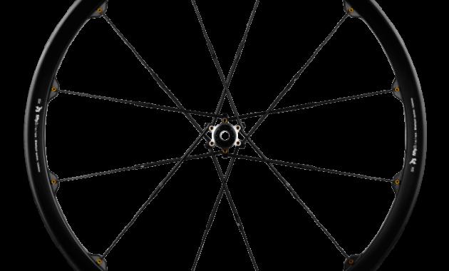 cobalt 11_black-gold